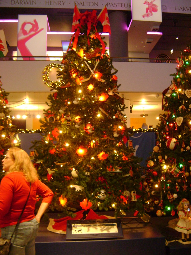 Canadian Christmas Tree at the Museum of Science and Industry