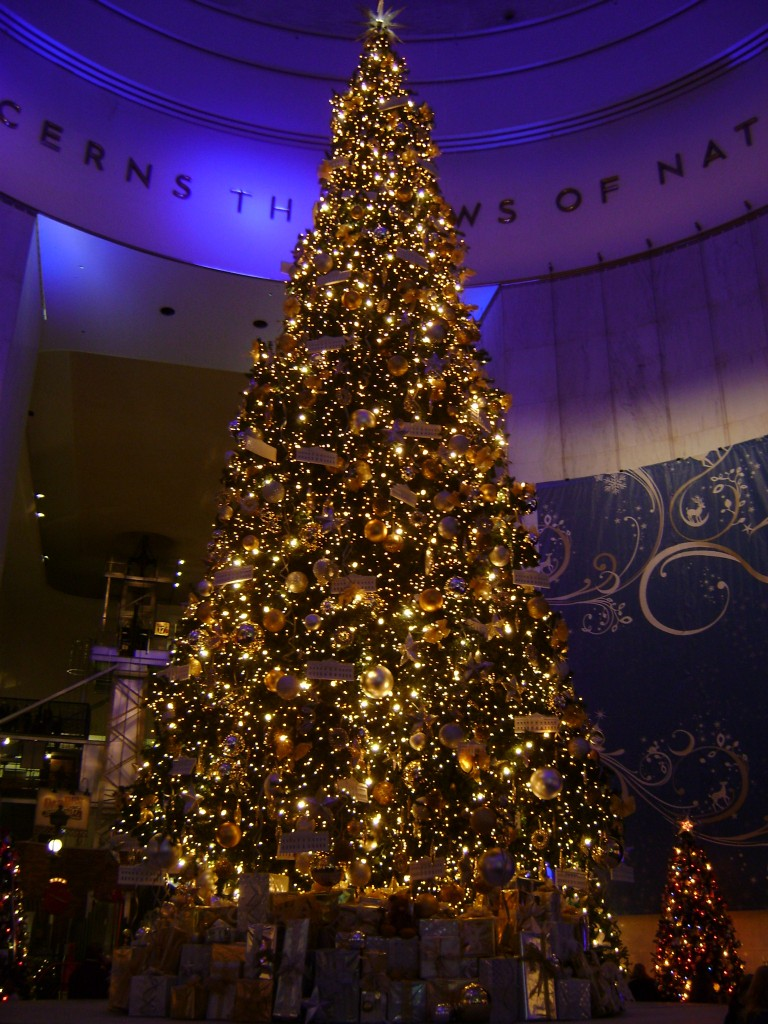 Main Christmas Tree at the Museum of Science and Industry
